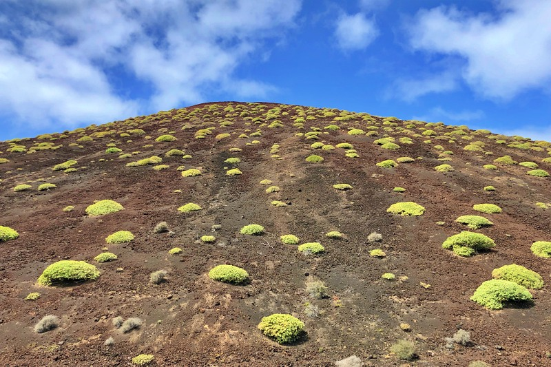 Im Nationalpark Timanfaya beim Landausflug Lanzarote auf eigene Faust