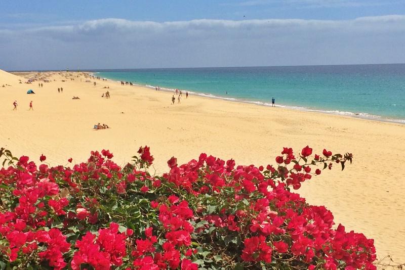 Landausflug Fuerteventura auf eigene Faust